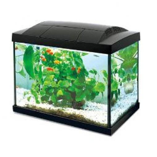 Hailea K-20 Aquarium Tank (Options Available)