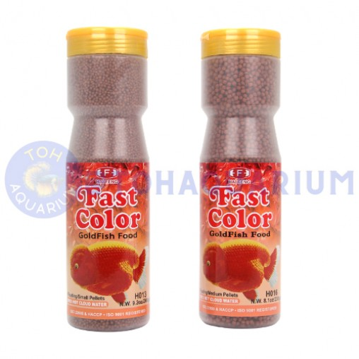 Hai Feng Goldfish Fast Colour (Options Available)