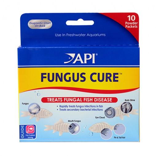 API Fungus Cure Powder Pax
