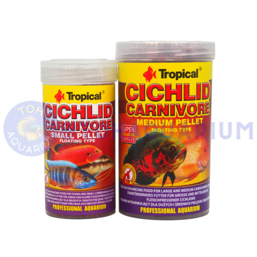 Tropical Cichlid Carnivore (Options Available)