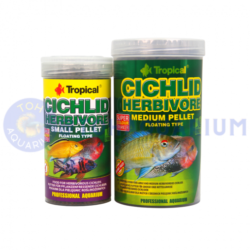 Tropical Cichlid Herbivore (Options Available)