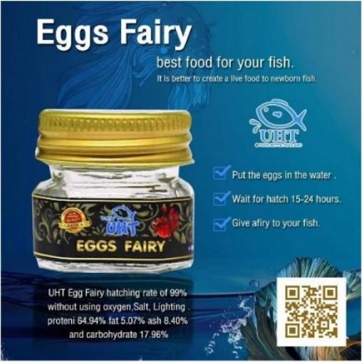 UHT Eggs Fairy