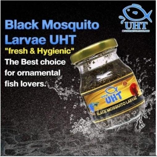 UHT Mosquito Black Larvae75g